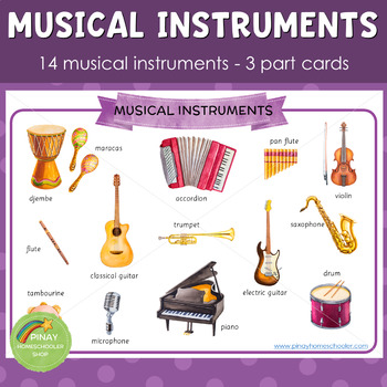 Musical Instruments Montessori 3 Part Cards