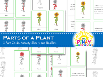 Montessori Inspired Parts of a Plant