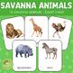 Montessori Inspired Savannah Animals 3 Part Cards