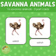 Savannah Animals Montessori 3 Part Cards