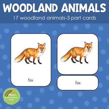 Woodland Animals Montessori 3 Part Cards