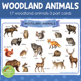 Montessori Inspired Woodland Animals 3 Part Cards