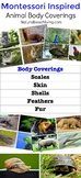 Montessori Inspired Zoology - Body Coverings