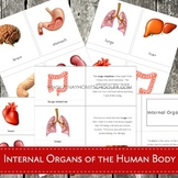 Internal Organs of the Human Body Montessori 3 Part Cards