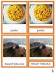 Montessori Italy 3-part Cards