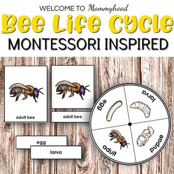 Montessori Life Cycle Bundle