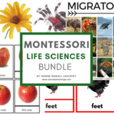 Montessori Life Sciences Activities Pack (13 ACTIVITIES/75+ PAGES!!)