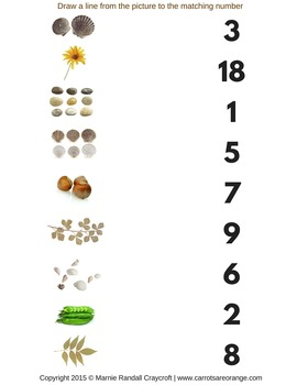 Math Image to Number Match - Nature Theme - Montessori