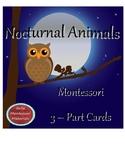 Montessori - Nocturnal Animals 3 - Part Cards
