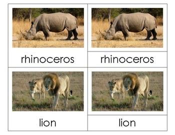 Montessori Nomenclature 3-Part Cards - AFRICAN ANIMALS - Vocabulary, Science
