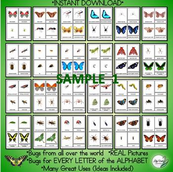 "Montessori Nomenclature Cards- ""BUGS & ARACHNIDS"" by LilyVale Learning"