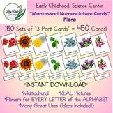 Montessori Nomenclature Cards-FLORA-Set of 450!