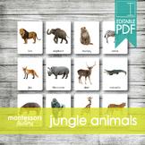 JUNGLE ANIMALS • Montessori Cards • Flash Cards • Three Pa