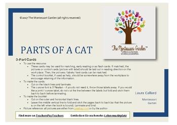 Montessori Nomenclature Cards: Parts of a Cat