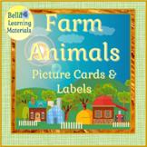 Montessori - Nouns with Safari Toob Farm