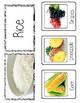 Montessori Nutrition