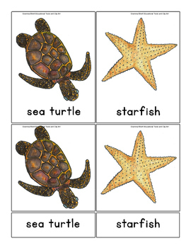 Montessori OCEAN 3 Part Cards - English Only