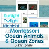 Montessori Ocean Animals and Ocean Zones - 3 Part Cards