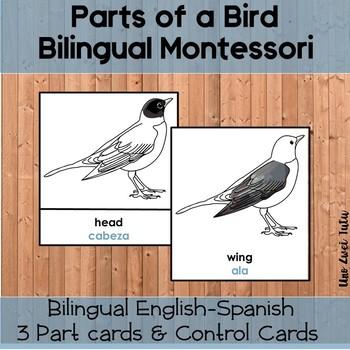 Montessori Parts Of A Bird Bilingual 3 Part Cards English-Spanish