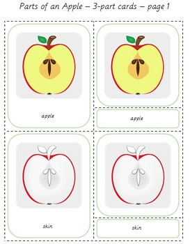 Apples! Parts of an Apple Cards + Mini book + Poster - Montessori