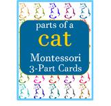 Montessori - Parts of a Cat 3 - Part Cards