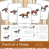 Parts of a Horse Montessori 3 Part Cards