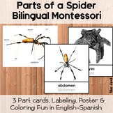 Montessori Parts of a Spider Bilingual Science Printable Pack English-Spanish