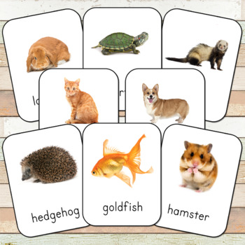 Montessori Inspired Pets 3 Part Cards