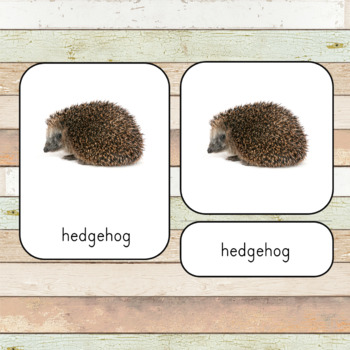 Montessori Pets 3 Part Cards