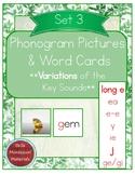 Montessori Phonogram Variations Pictures & Words Set 3