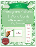 Montessori Phonogram Variations Pictures & Words Set 5