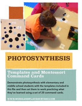 Montessori Photosynthesis Materials