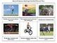 Montessori Picture & Matching Cards #2