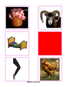 Montessori Pink Series Photos and Word Cards in Montessori Colors (60+ Words)