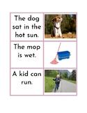Montessori Pink Series - Simple Sentence Matching