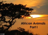 African Animals : Montessori principles using PowerPoint