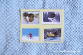 "Montessori Pre-Reading ""Does Not Belong"" Card Set"