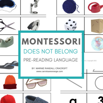 "Montessori Pre-Reading ""Does Not Belong"" Card Set"