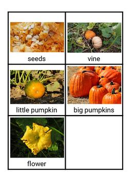Montessori Pumpkin 3 Part Cards