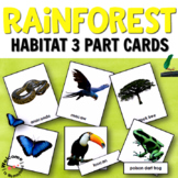 Montessori Rainforest 3 Part Cards