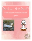 Montessori - Real or Not Real?