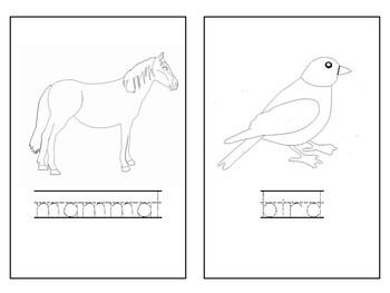 Montessori Science: Parts of a Vertebrate Worksheets