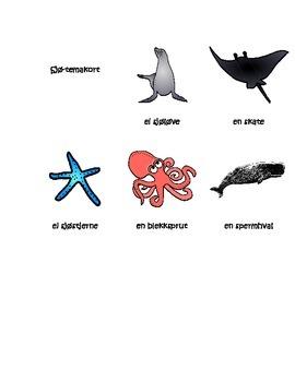 Montessori Sjø Organismer 3-Del Temakort
