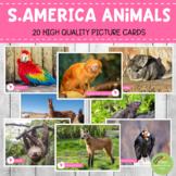 Montessori South American Animals Picture Cards