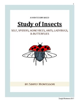 79 paged Montessori Study of Insect Curriculum Preschool Homeschooling