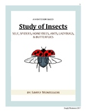 79 paged Montessori Study of Insect Curriculum Preschool H