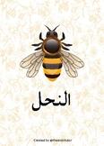 Montessori Style Arabic Bee Unit
