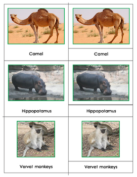Animals of Africa and Mini Match-up Cards Bundle