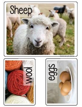 Montessori - The Farm