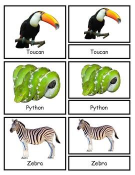 Montessori Three Part Cards: Zoo Animals